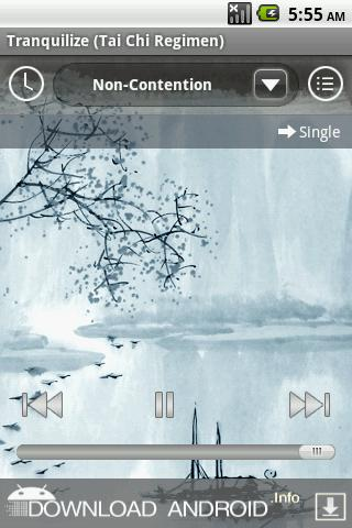 Calming Music to Tranquilize - screenshot