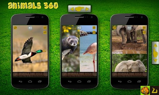 Animals 360 - screenshot thumbnail