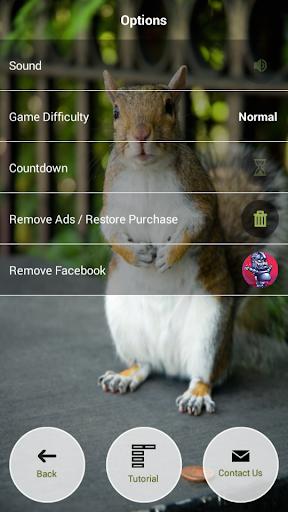 【免費休閒App】Llama Or Duck?!-APP點子