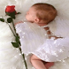 Rose Angel Baby LWP