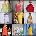 fashion style 2013(women) icon