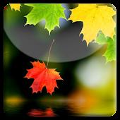 Autumn HD LiveWallpaper