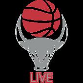 Basketbull Live