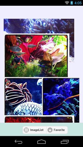 PhotoClip Aquarium