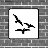 Flocking Live Wallpaper Free