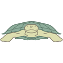 The Turtle icon