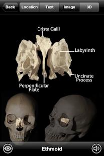 玩免費醫療APP|下載Skeletal Anatomy 3D app不用錢|硬是要APP