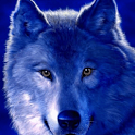 Wolf Eyes Magnetic Live Wallpa icon