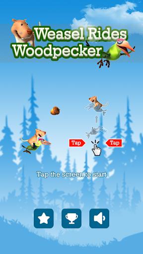 Weasel rides woodpecker