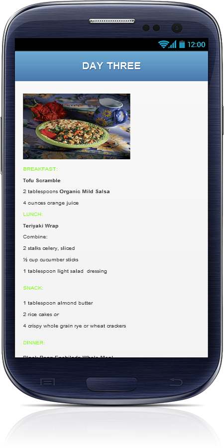 Vegetarian Diet Plan - screenshot