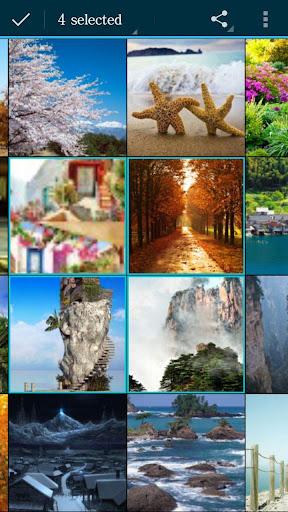 無料摄影Appのイメージギャラリー|記事Game