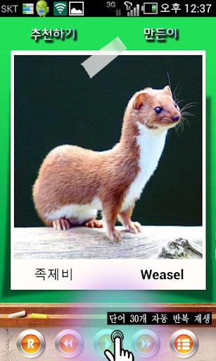 【免費教育App】韓國語,英語單詞卡片-APP點子