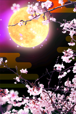 Cherry Blossoms at Night Trial