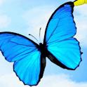 Butterflies In Flight Live Wal logo