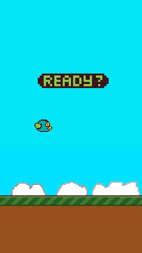 Benjy Bird