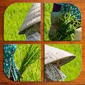 Vietnam puzzle icon
