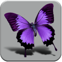 HD Beautiful butterfly icon
