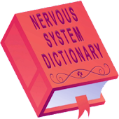 Nervous System Dictionary