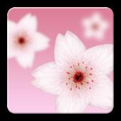 Falling Cherry Blossom