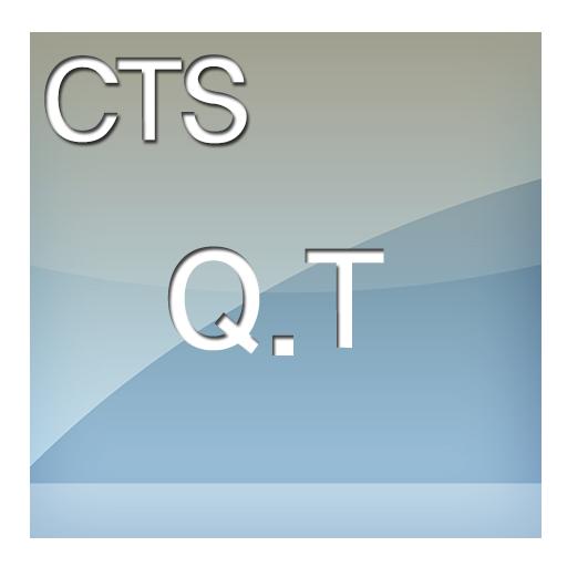 CTS 큐티