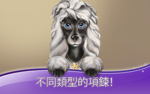 玩個人化App|貴賓犬 - 愛在巴黎免費|APP試玩