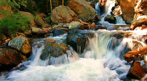 by Todd Yoder - Nature Up Close Water ( foliage, sunlight, rushing, falls rocks, river )