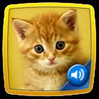 Tier Quiz Kinder icon