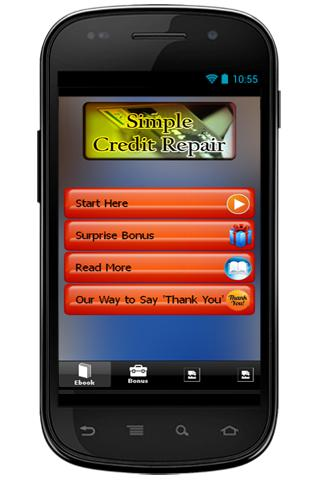Simple Credit Repair