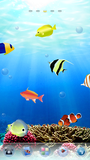 Coral Ocean Theme
