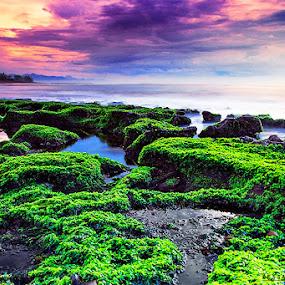 the manyar beach by IDewa ZesmaerthaPrabawatma - Landscapes Sunsets & Sunrises