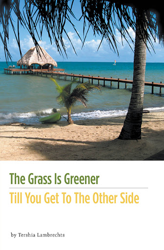 The Grass Is Greener Till You Get To The Other Side cover