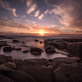 by Tracey Macnish - Landscapes Sunsets & Sunrises ( socity6,  )