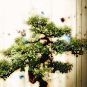 Bonsai Art GO EX Theme