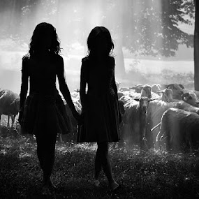 Girls silhouettes by Cristi Vescan - Black & White Portraits & People ( silhouette, silhouettes )