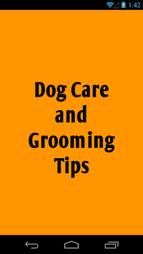 Dog Care and Grooming Tips