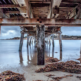 Lurking Under Jetties by Sharon Wills - Buildings & Architecture Bridges & Suspended Structures ( jetties, water, south australia, granit island, sand, victor harbour, victor harbor, waves, jetty, beach,  )