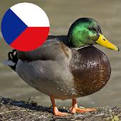 Zvuky českých zvířat