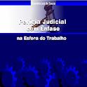 Perícia Judicial Trabalhista icon