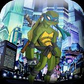 Ninja Turtle skate