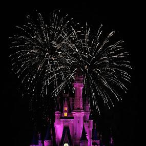 by Brooke Beauregard - City,  Street & Park  Amusement Parks ( park, dreams, magic kingdom, fireworks, disney )