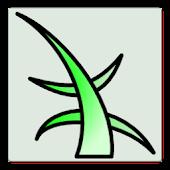 Klatreruter