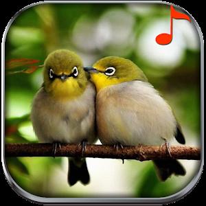 自然聲音鈴聲 音樂 App LOGO-APP開箱王