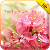 Summer Flowers Solo Theme