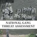 Gang Threat Assessment