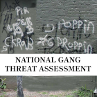 Gang Threat Assessment icon