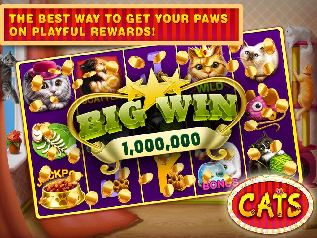 play cats slots for free