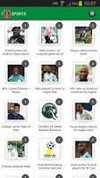 Screenshot of The Nation (Nigeria)