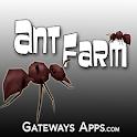 Ant Farm icon