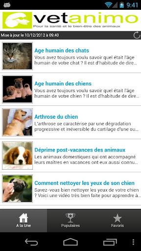Conseil vétérinaires