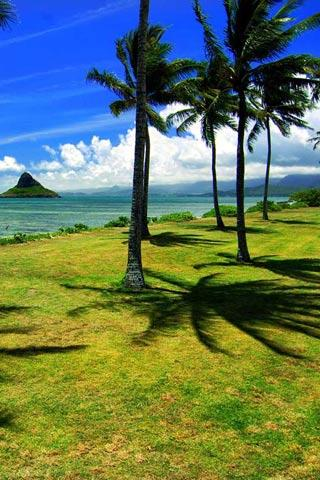 Hawaii Scenery Wallpaper - screenshot